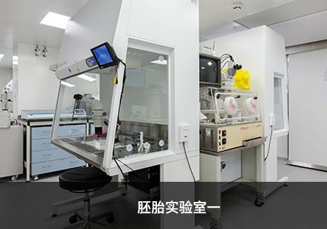 胚胎实验室一