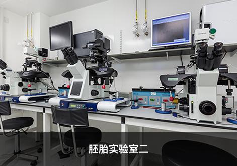 胚胎实验室二